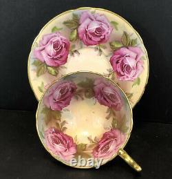 Rare Aynsley 13 Grand Chou Roses Lourdes Gold Tea Cup & Saucer Set