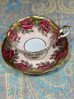 Vintage Rose Paragon Teacup & Saucer Band Of Red Chabage Roses Heavy Gold
